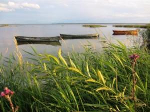озеро Дривяты, Браслав